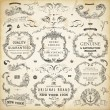 Vector set: calligraphic design elements and page decoration - lots of useful elements to embellish your layout — Stock Vector #18042297