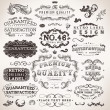 Vector set calligraphic design elements, engraving flowers and retro frames, Premium Quality and Satisfaction Guarantee vintage design Labels Old style, vector collection. — Stock Vector #18416537