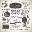 Vector set calligraphic design elements, engraving flowers and retro frames, Premium Quality and Satisfaction Guarantee vintage design Labels Old style, vector collection. — Stock Vector #18416635