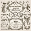 Vector set of calligraphic design elements: page decoration, Premium Quality and Satisfaction Guarantee Label, antique and baroque frames and floral ornaments — ストックベクター #22363825