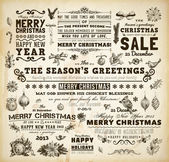 Christmas decoration collection Set of calligraphic and typographic elements, frames, vintage labels. Ribbons, bows, birds, baubles on a fur-tree branches with holly berries - all for Xmas design. — Stock vektor