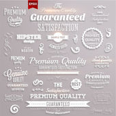 Premium quality and guaranteed satisfaction — Stock Vector