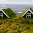 Stock Photo: Hobbit homes