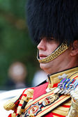 Drum Major — Stock Photo