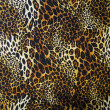 Stock Photo: Leopard skin seamless background