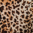 Stock Photo: Leopard textile pattern