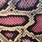 texture della pelle di serpente — Foto Stock