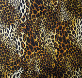 Leopard skin seamless background — Stock Photo