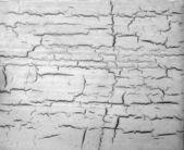 Crack texture — Stock Photo