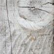 Wooden node texture macro — Stock Photo