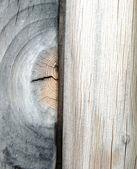 Textura de madera nodo detalle — Foto de Stock