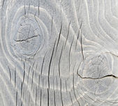 Woodgrain macro — Stock Photo
