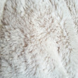 White fur texture — Foto de stock #18340687