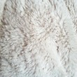 Foto Stock: White fur texture