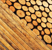 Wood collage — Stock Photo