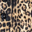 Close-up of a stylish leopard jacket with black button — Stock Photo