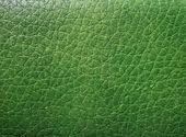Green skin texture — Stock Photo