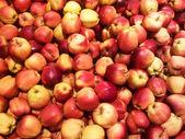 Jabłka tło — Zdjęcie stockowe