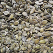 Stock Photo: Roasted pumpkin seeds