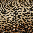 Stock Photo: Wild animal skin pattern - material