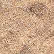 Beach sand texture, seamless — Stock Photo #30709711