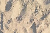 Sand texture on the beach — Stock Photo