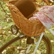Vintage Bicycle in nature — Stock Photo #33439215