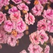 Vintage flowers background — Stock Photo #34126201