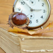 Old book with chestnut and clock — ストック写真