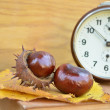 Old vintage clock and chesnut — Stock Photo #34313895