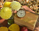 Apples and brown clock on books with beautiful flowers — Stock Photo