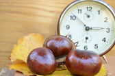 Old book with chestnut and clock vintage — Stock Photo