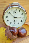 Old clock and chestnut — Stock Photo