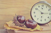 Old vintage clock and chesnut — Stock Photo