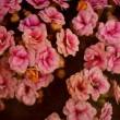 Dark pattern of vintage flowers background — Lizenzfreies Foto