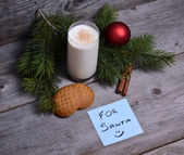 Milk and cookies for Santa Claus — Stock Photo