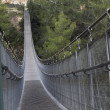 Stock Photo: Suspension Bridge