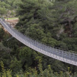 Stock Photo: Suspension Bridge 2