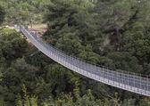 Suspension Bridge 2 — Stock Photo