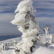 Fantastic of sculpture on mountain in snow — Foto de stock #18895141