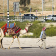 Bedouin with camel — Stockfoto #23630287