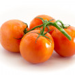 Branch of red tomatoes — Stock Photo