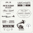 Set of wedding invitation vintage design elements — Imagen vectorial