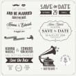 Set of wedding invitation vintage design elements — Vector de stock #19033543