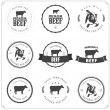 Stock vektor: Set of premium beef labels, badges and design elements