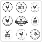 Set of premium chicken meat and eggs labels — Stockvector