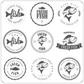 Set bestehend aus fisch briefmarken, etiketten und abzeichen — Stockvektor