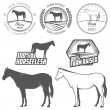 Set of horse meat labels and badges — Stock Vector