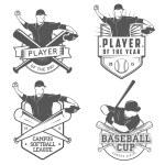 Set of vintage baseball labels and badges — Stock Vector
