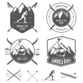 Set of nordic skiing design elements — Stock Vector